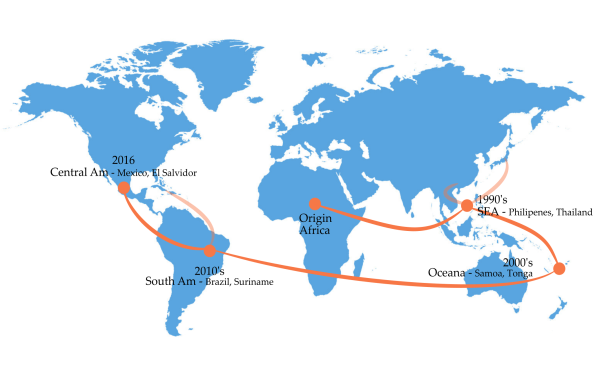 Using Coalescent Analysis To Map The 2016 Zika Virus Outbreak